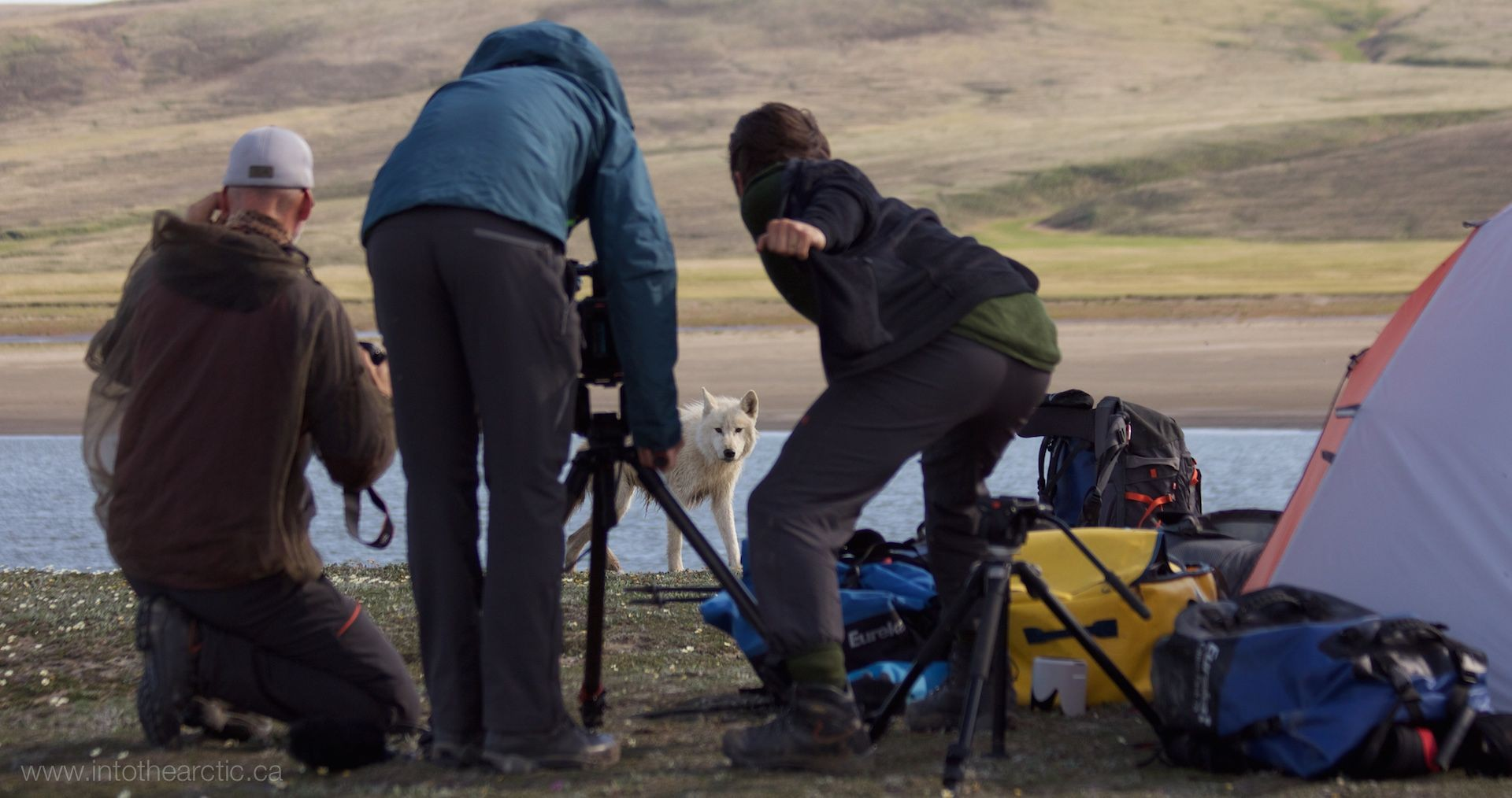 IntoTheArctic2015,147,IMG_6326